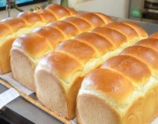 更に発酵させて食パンに焼き上げます